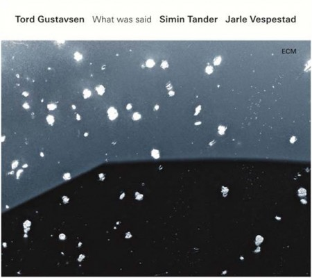 Tord Gustavsen: What Was Said