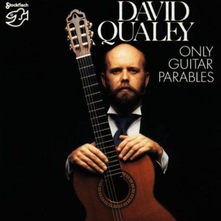 David Qualey: Only Guitar Parables